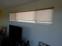 Holland Blind with translucent fabric.